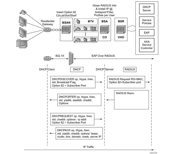 Dhcp assignment